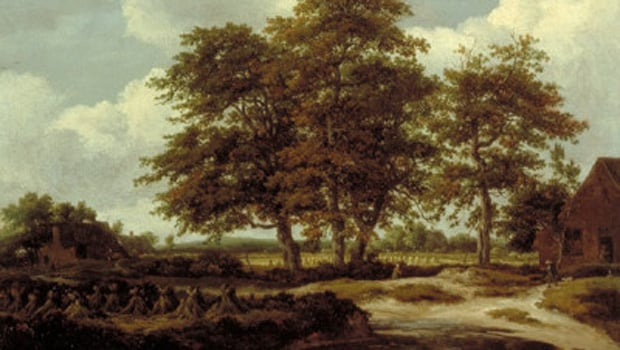 A Wooded Landscape with a Cornfield by Jacob van Ruisdael circa 1655-1660 - Art Funded in 1977