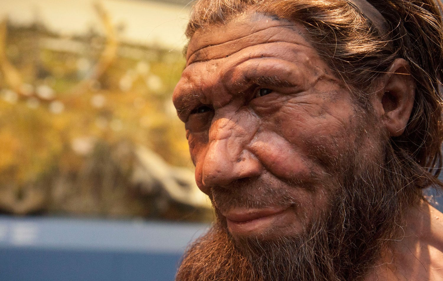 1. Britain: One Million Years of the Human Story, until 28 September 2014 - Natural History Museum, London. 50% off with National Art Pass