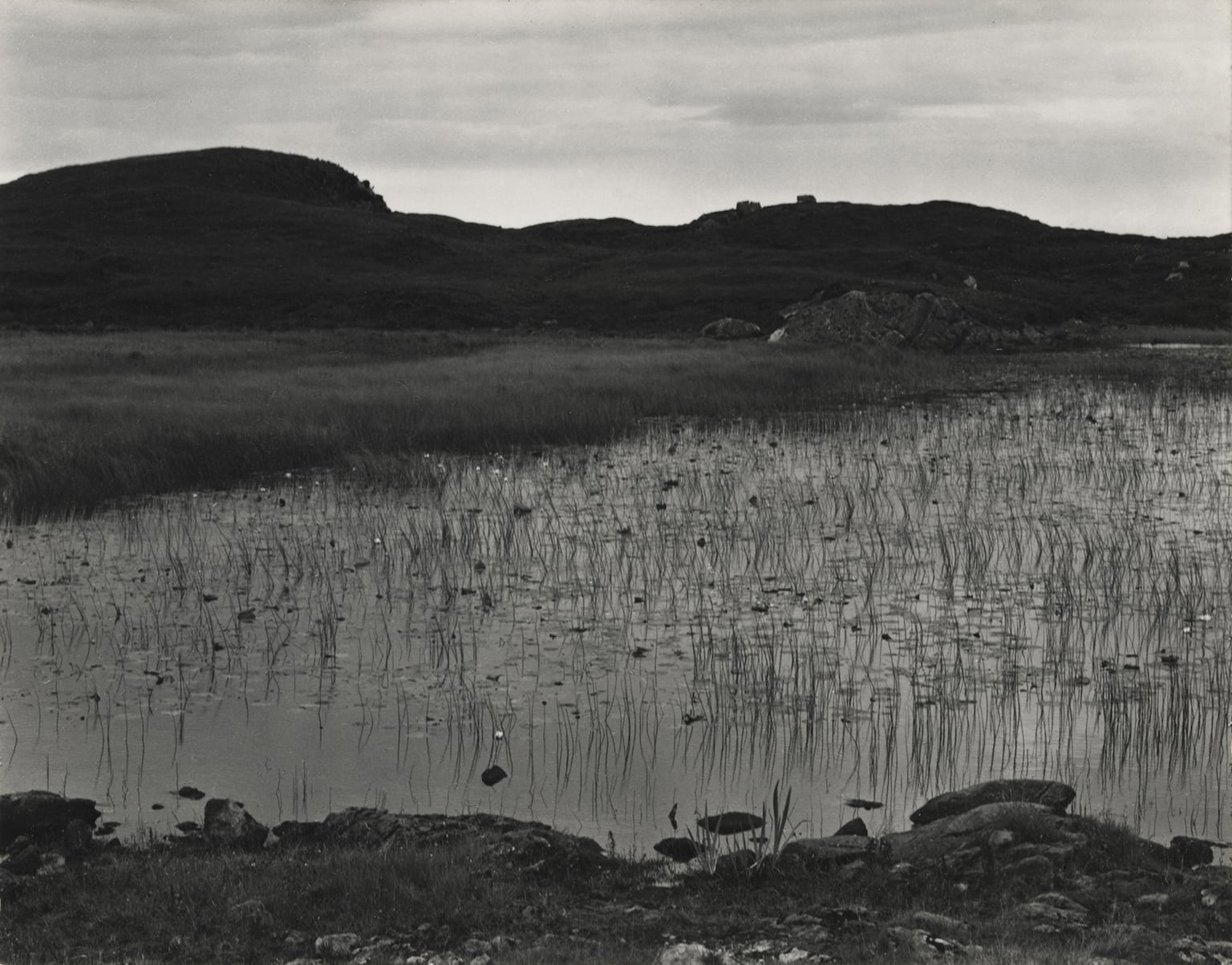 Loch and Lilies, South Uist, Hebrides, 1954 - © Aperture Foundation Inc., Paul Strand Archive