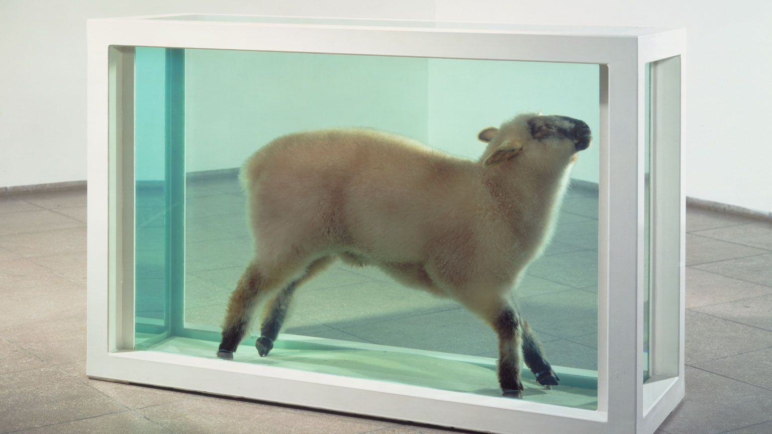 4. Damien Hirst, Pier Arts Centre, free to all - Damien Hirst, Away From the Flock, 1994 © Damien Hirst