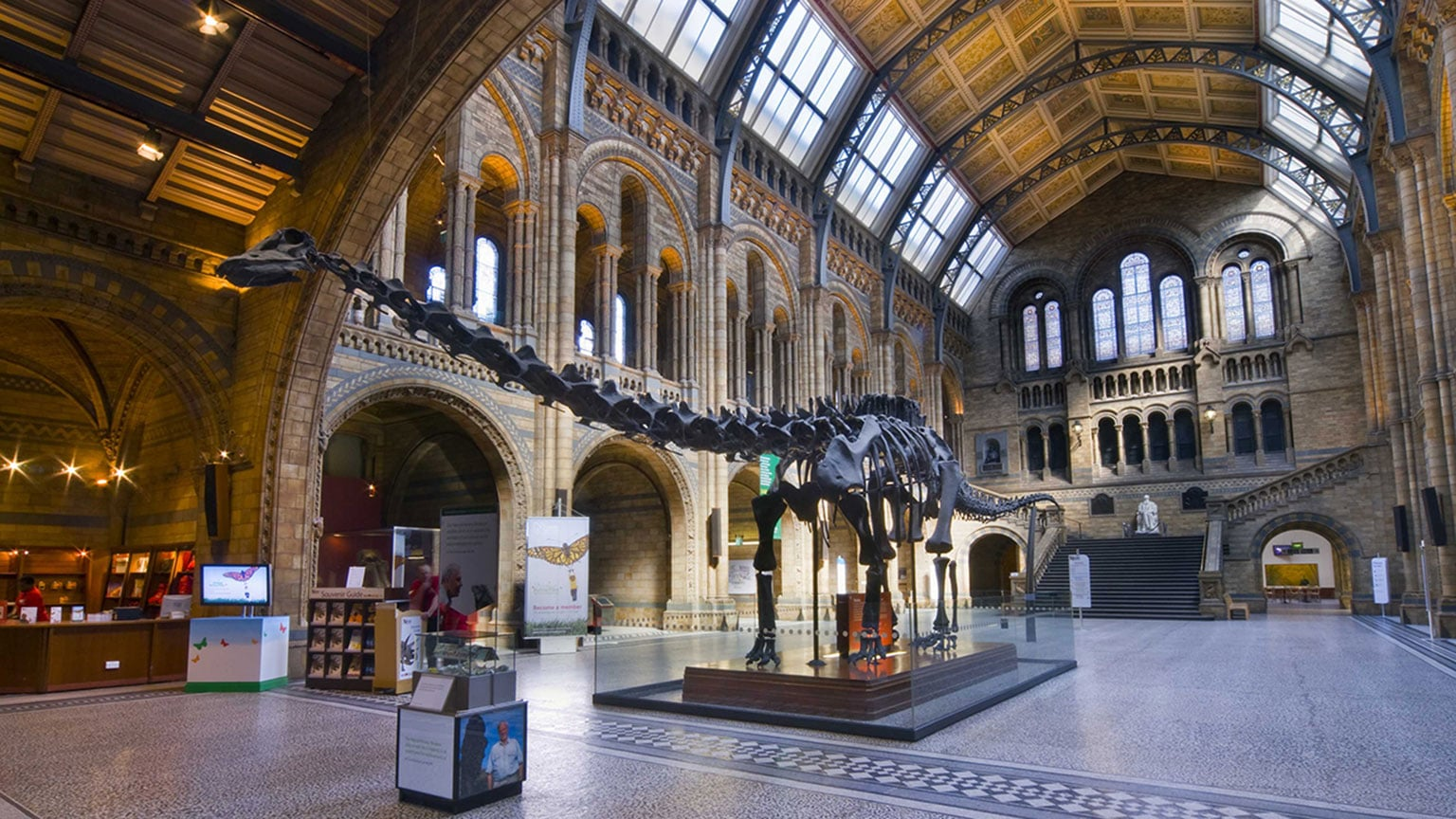 Natural History Museum, London. 50% off exhibitions with National Art Pass -