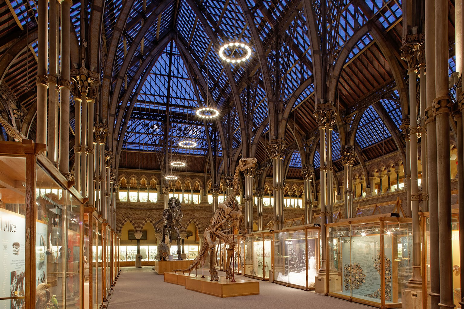 Natural History Museum Oxford Opening Times