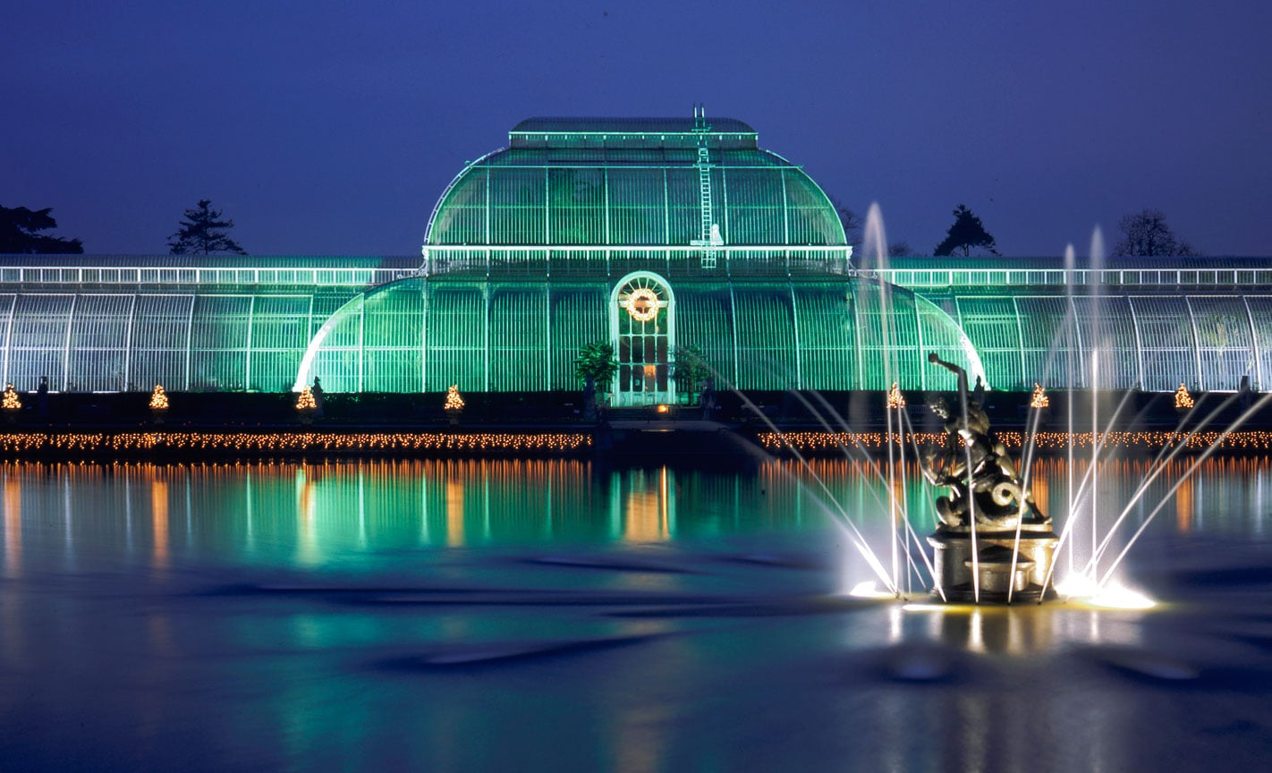 The Palm House At Christmas