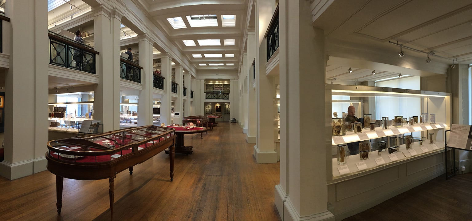 Panoramic view of the Wohl Pathology Gallery