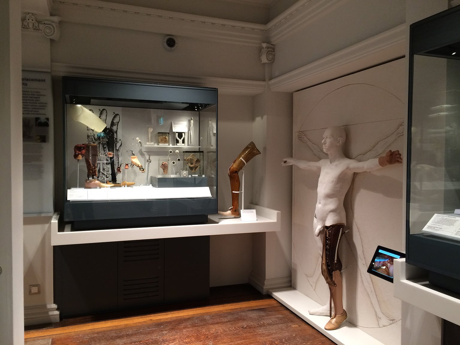View of the Techniques and Technology area showing prosthetic Vitruvian man