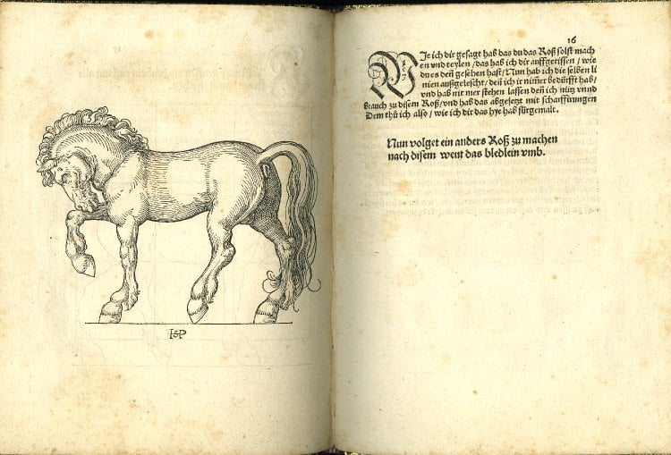 The Proportions of the Horse: Book with woodcuts