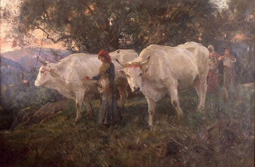Leading Cattle & Cattle in a Wood