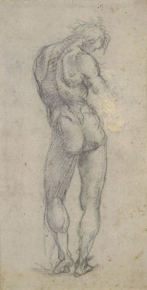 Study of the Nude