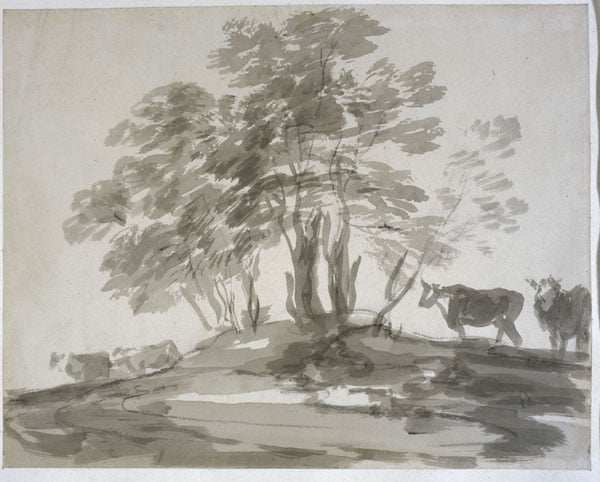 Clump of Trees with Four Cows & Study of Rocks