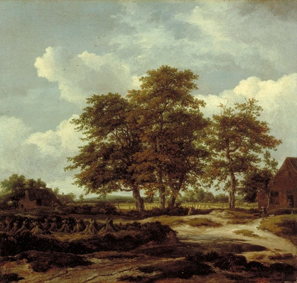 A Wooded Landscape with a Cornfield