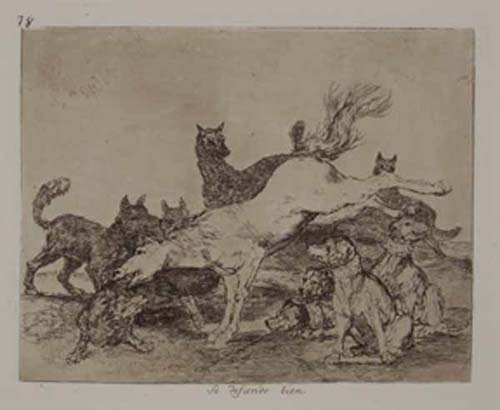 Collection of 69 etchings