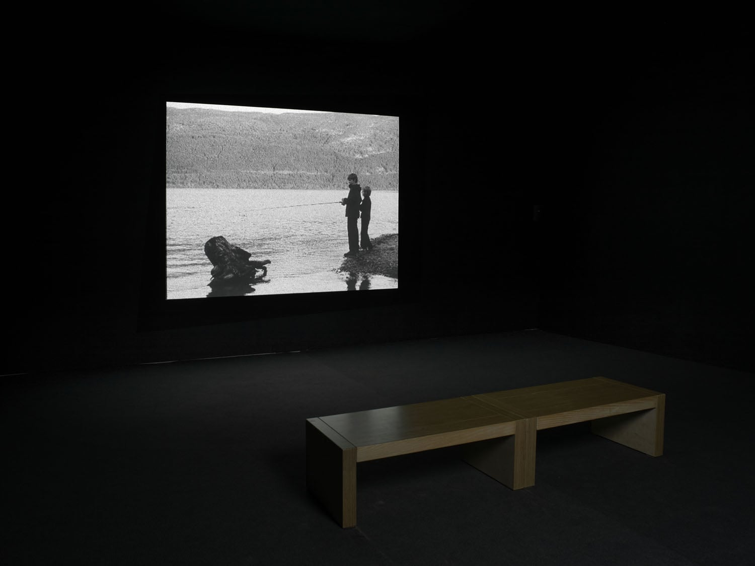 Works from the series 'Towards a Gestalt Image – Loch Ness & Fact'
