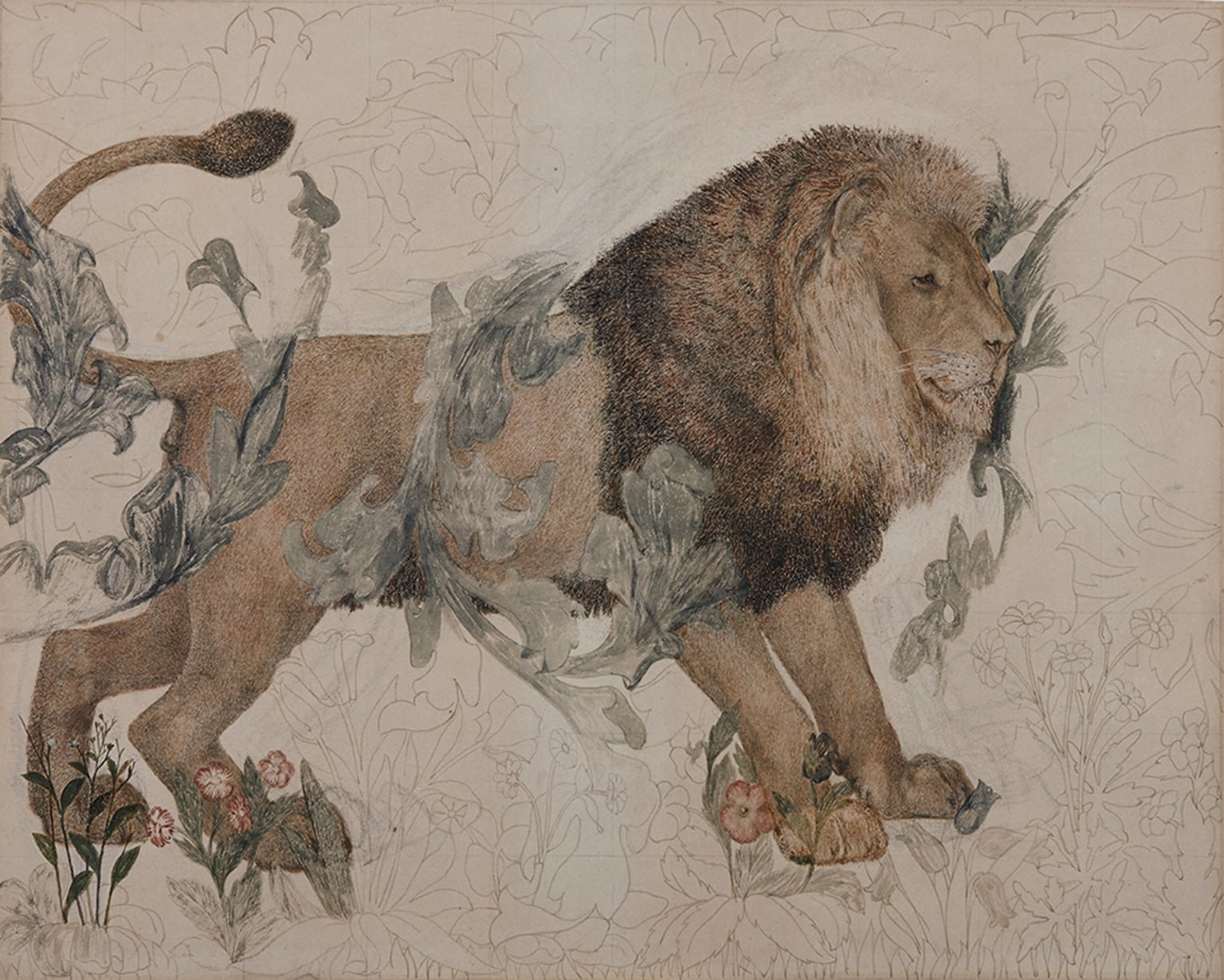 i) The Fox; ii) The Hare; iii) The Raven; iv) The Lion