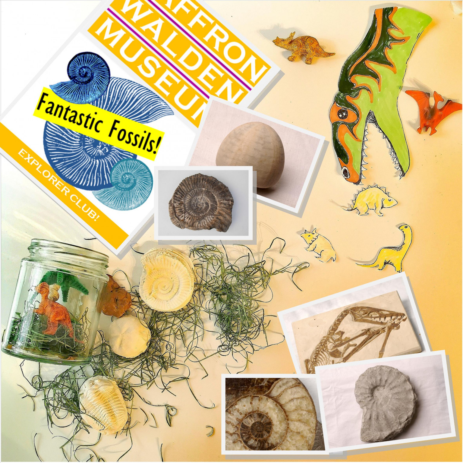 Fantastic Fossils click and collect activity pack