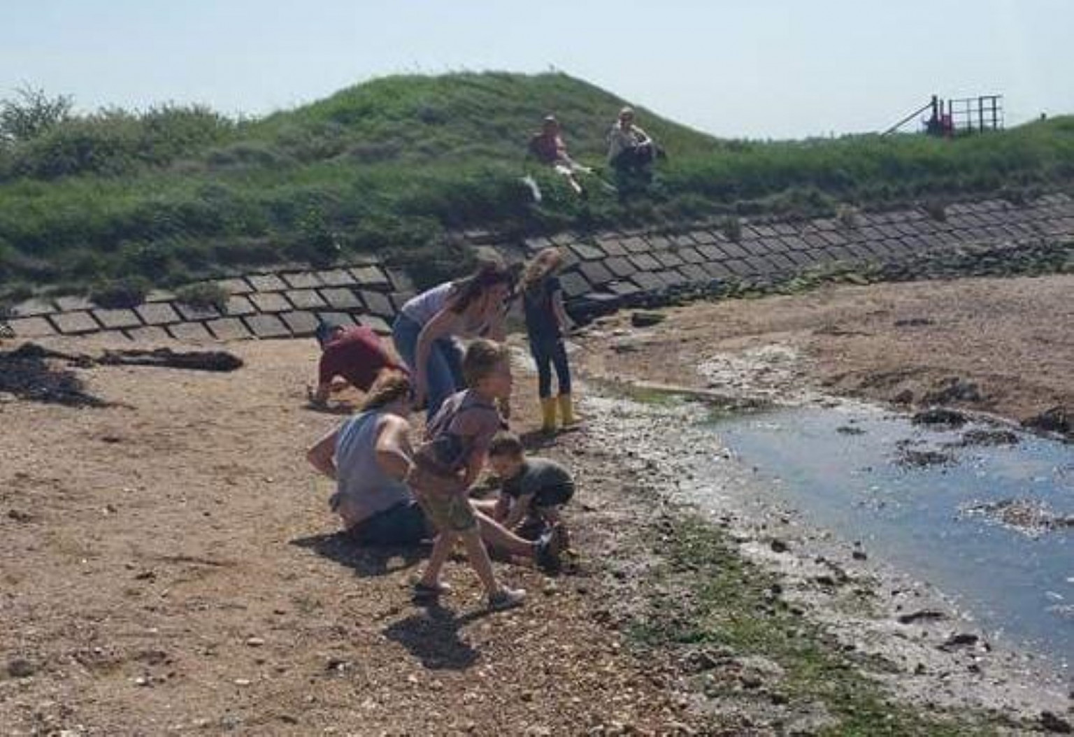 Families digging around for fossils at Creeksea Cliff
