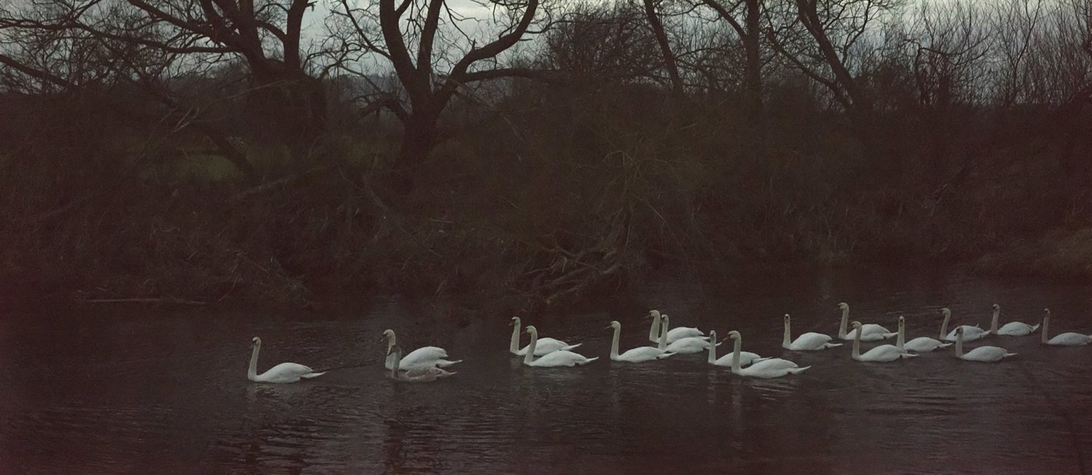 'A bend in the river', December 2017 © Jem Southam courtesy Royal West of England Academy