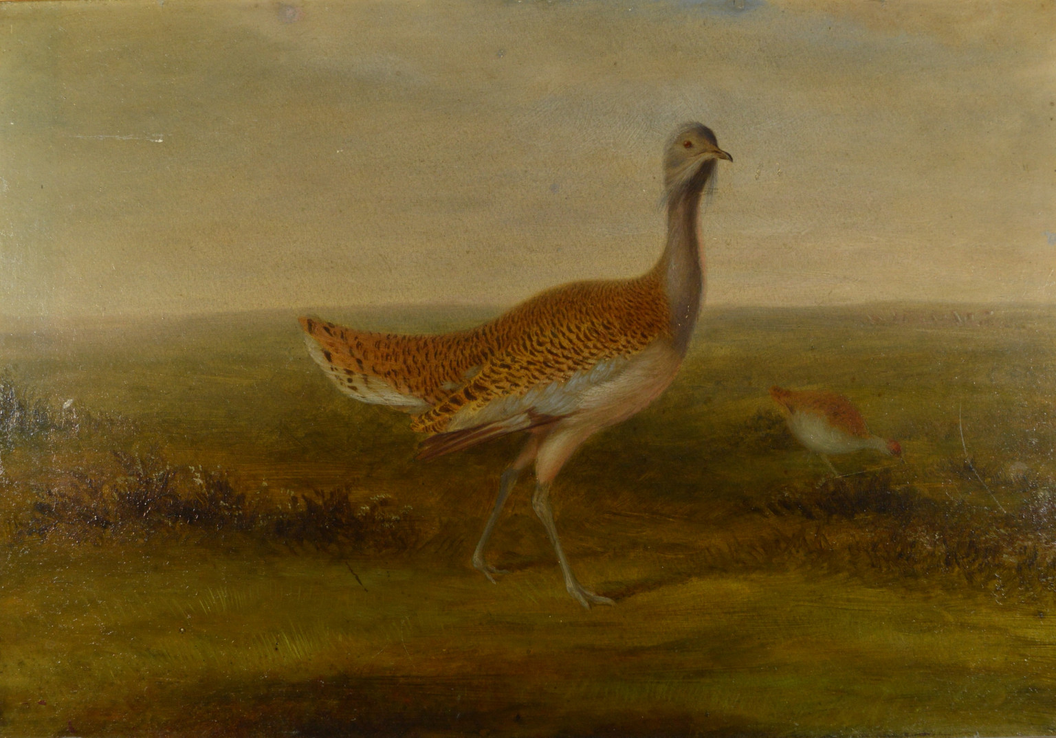 Bustards on Salisbury Plain, with Stonehenge in the distance by artist Henry Grant. c.1870