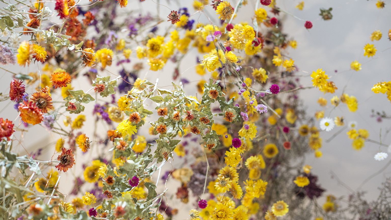 Rebecca Louise Law, The Beauty of Decay, 2016, The Chandran Gallery at Compton Verney